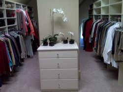 AFTER Closet Unpack and Organize